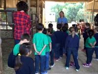 Our Kinder Kids Visit the Gwynn Farm!